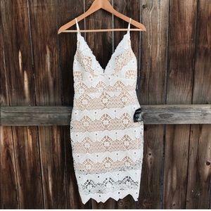 Lulus Lace Bodycon Dress